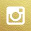 dyob-gold-icon-instagram